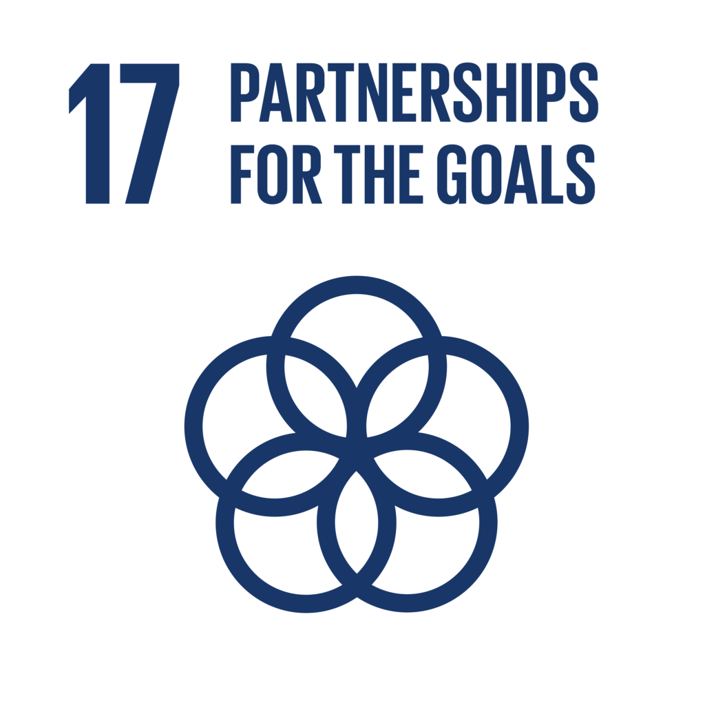 agenda 2030 partnerships for the goals